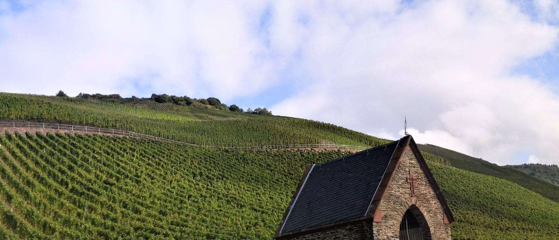 Vine Farmer